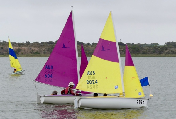 Racing-included-four-short-races-for-Sailability.jpg